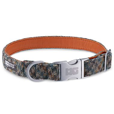 Alfie Hound Dog Collar with Orange Leather