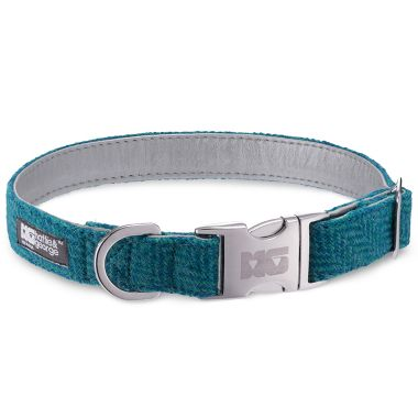 Frankie Goes Turquoise Dog Collar with Metallic Silver Leather
