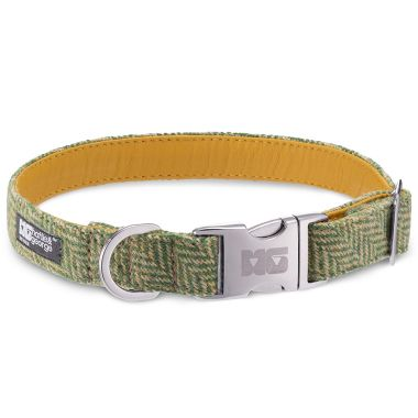 George's Green Arrow Dog Collar with Yellow Leather
