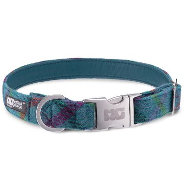 Gus's Turquoise Dog Collar with Turquoise Leather