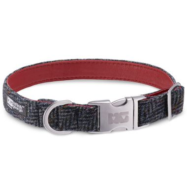 Harley's Arrow Dog Collar with Ferrari Red Leather