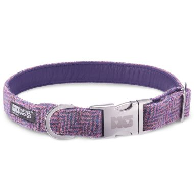 Mia's Purples & Pinks Dog Collar with Royal Purple Leather