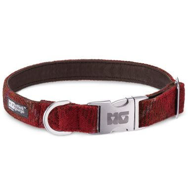 Rusty & Red Dog Collar with Chestnut Leather