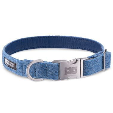 Teddy Blue Dog Collar with Cobalt Leather