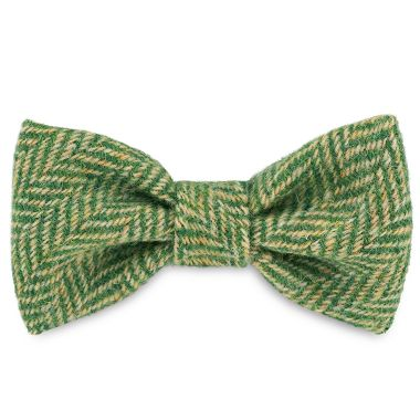 George's Green Arrow Dog Bow Tie