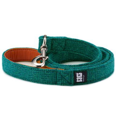 Frankie Goes Turquoise Dog Lead
