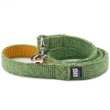 George's Green Arrow Dog Lead