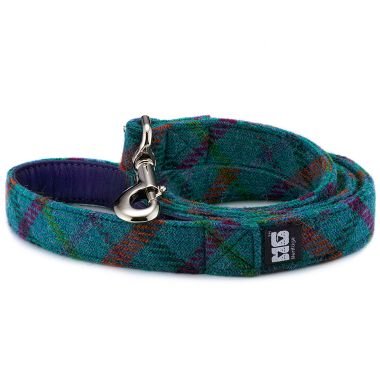 Gus's Turquoise Dog Lead