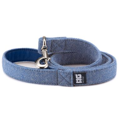 Teddy Blue Dog Lead