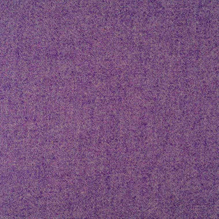 Sasha's Purple